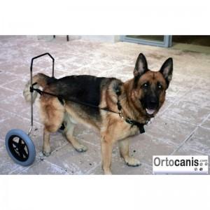 silla-de-ruedas-para-perro