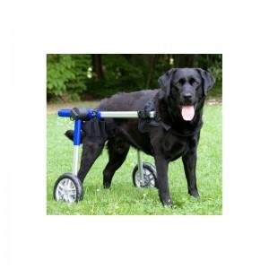 sillas-de-ruedas-para-perros